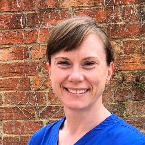 Team Member - Dr Sue Braun